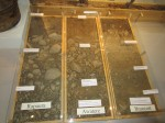 Different Soil Types in the Region