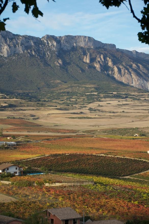 Laguardia_Rioja3